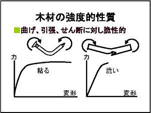 2009_0228_zu07.jpg
